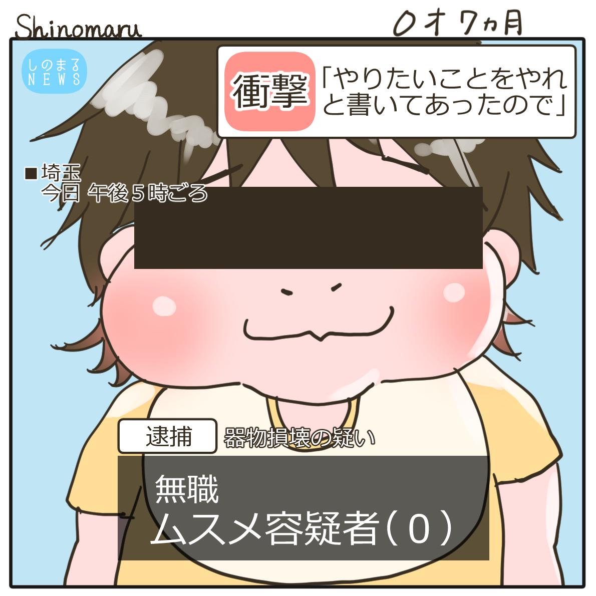 f:id:Shinomaru:20210608221902p:plain
