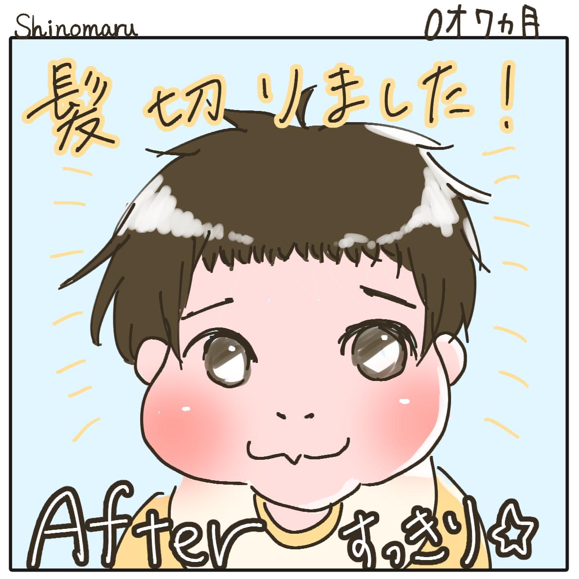 f:id:Shinomaru:20210614210655p:plain