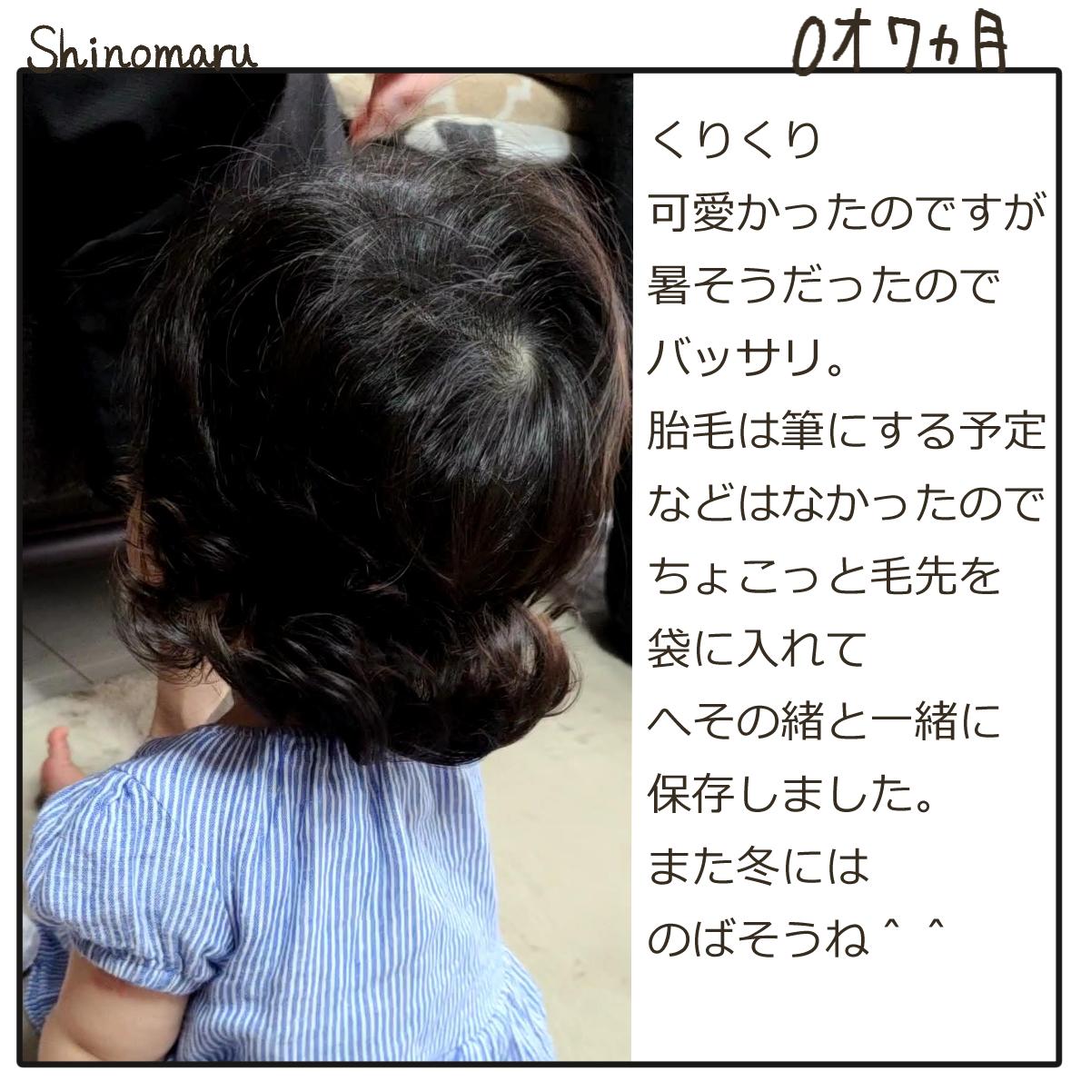 f:id:Shinomaru:20210614210754p:plain