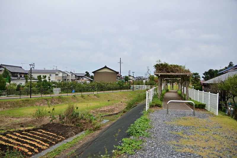 f:id:Shinpeki:20201126233411j:plain
