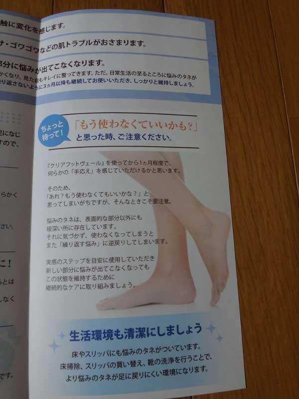 CLEAR FOOT VEIL 中身3