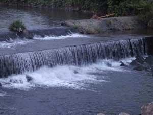 川の流れは穏やか