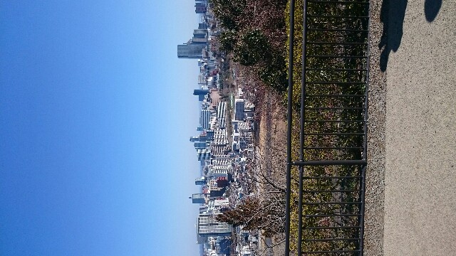 f:id:Shio_sogeum:20190331235441j:image