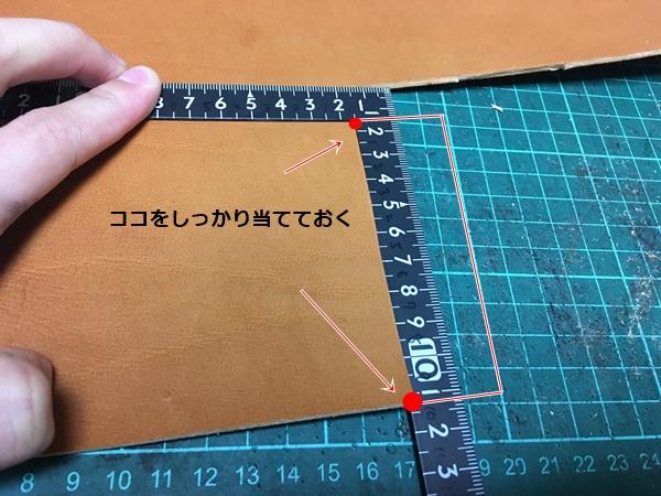 f:id:Shiohana:20190310205530j:plain