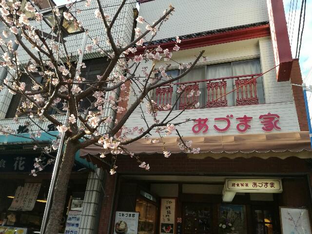 f:id:Shiro-yanaka:20170225124758j:image