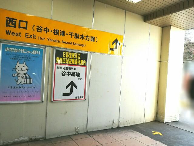 f:id:Shiro-yanaka:20170311195131j:image