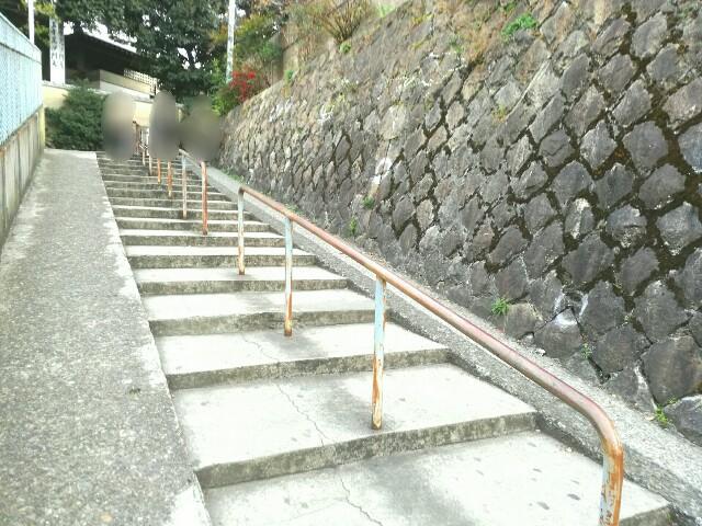 f:id:Shiro-yanaka:20170325195702j:image
