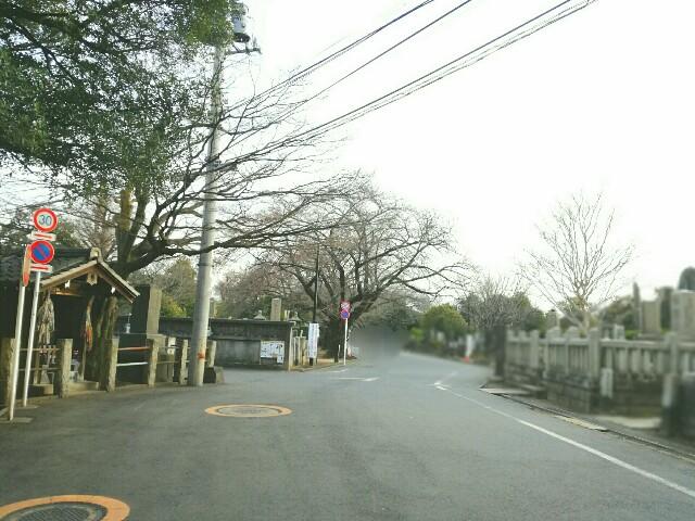 f:id:Shiro-yanaka:20170325200743j:image