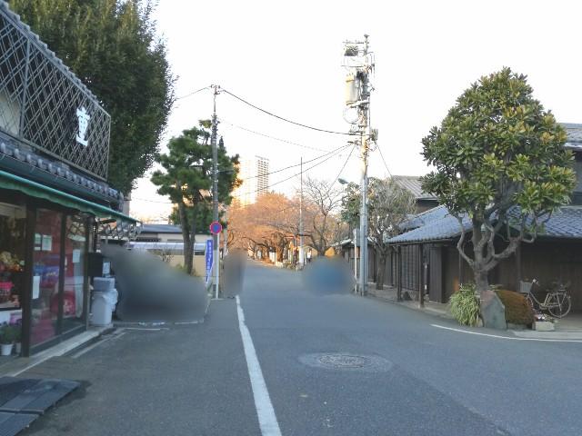 f:id:Shiro-yanaka:20170402050804j:image