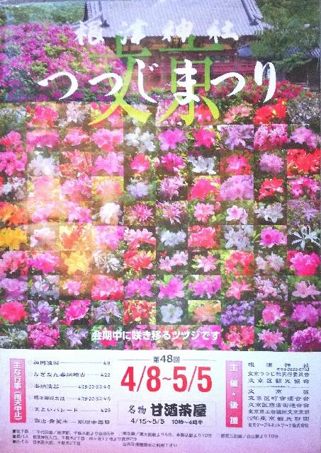 f:id:Shiro-yanaka:20170407173507j:image