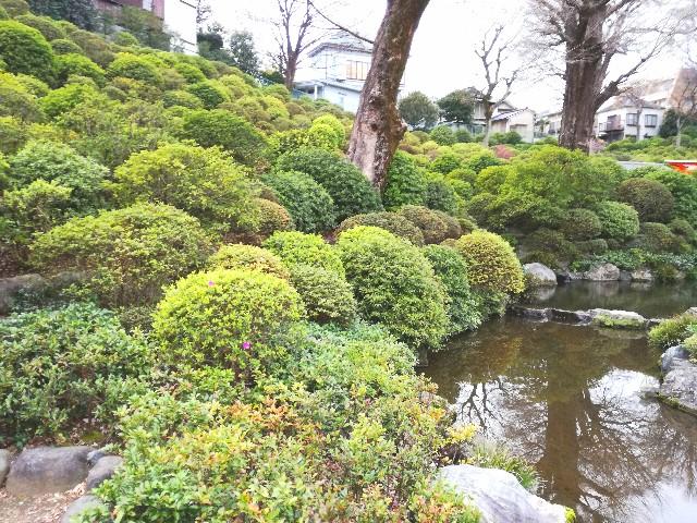 f:id:Shiro-yanaka:20170407173833j:image
