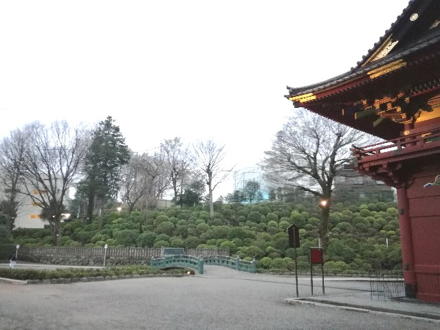 f:id:Shiro-yanaka:20170408235837j:image