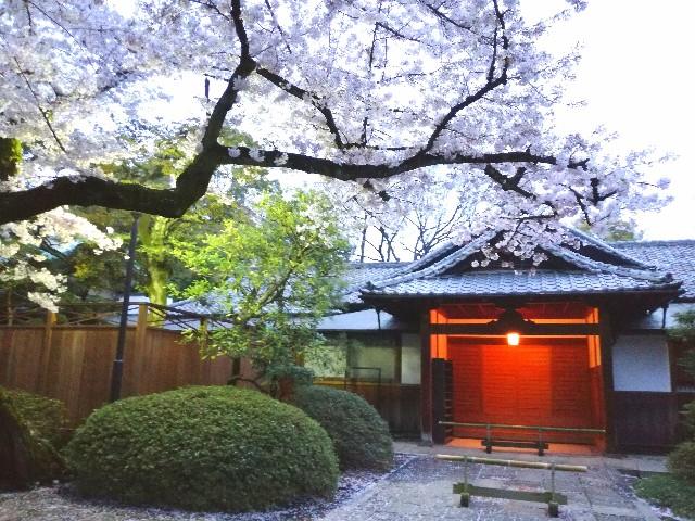 f:id:Shiro-yanaka:20170409001128j:image