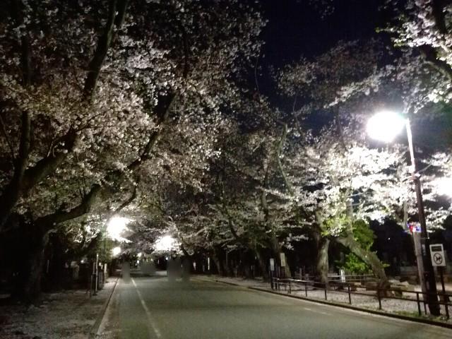 f:id:Shiro-yanaka:20170411031409j:image