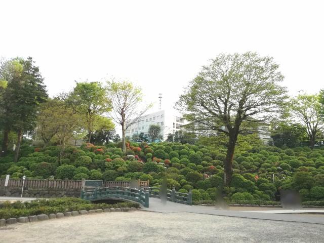 f:id:Shiro-yanaka:20170421213639j:image
