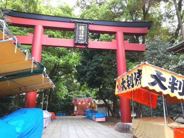 f:id:Shiro-yanaka:20170421214404j:image