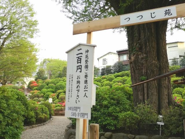 f:id:Shiro-yanaka:20170423233330j:image