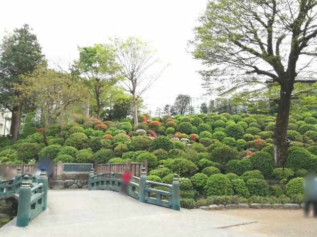 f:id:Shiro-yanaka:20170423233930j:image