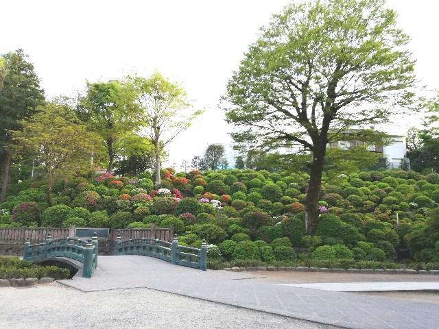 f:id:Shiro-yanaka:20170426002159j:image