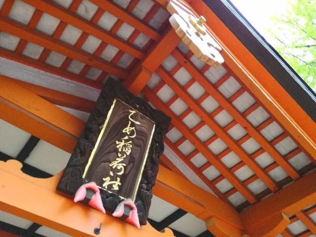 f:id:Shiro-yanaka:20170426235323j:image