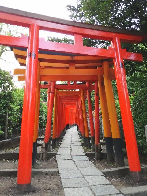 f:id:Shiro-yanaka:20170426235508j:image