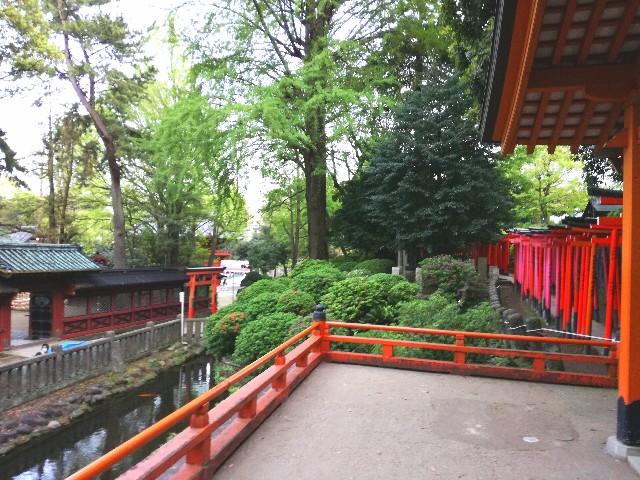 f:id:Shiro-yanaka:20170427001046j:image