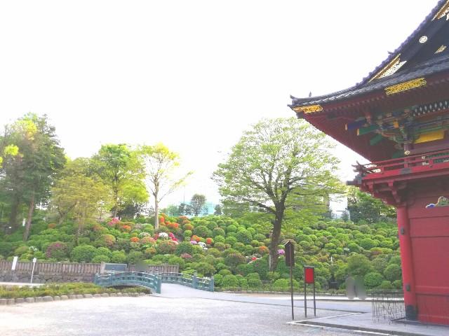 f:id:Shiro-yanaka:20170427232338j:image