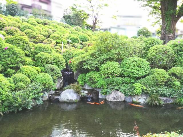 f:id:Shiro-yanaka:20170427233103j:image