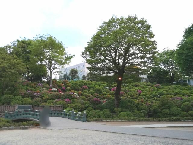 f:id:Shiro-yanaka:20170501123007j:image