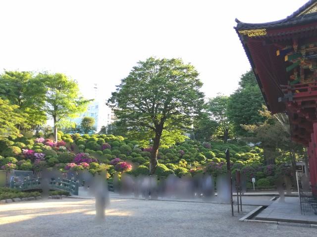 f:id:Shiro-yanaka:20170505211058j:image