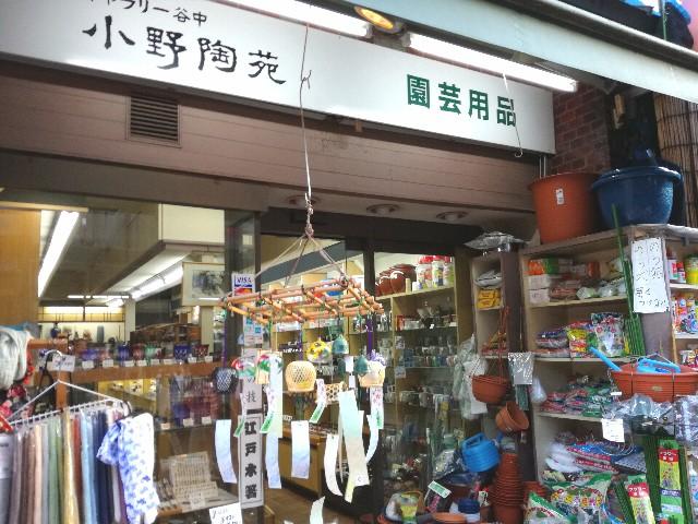 f:id:Shiro-yanaka:20170511225342j:image