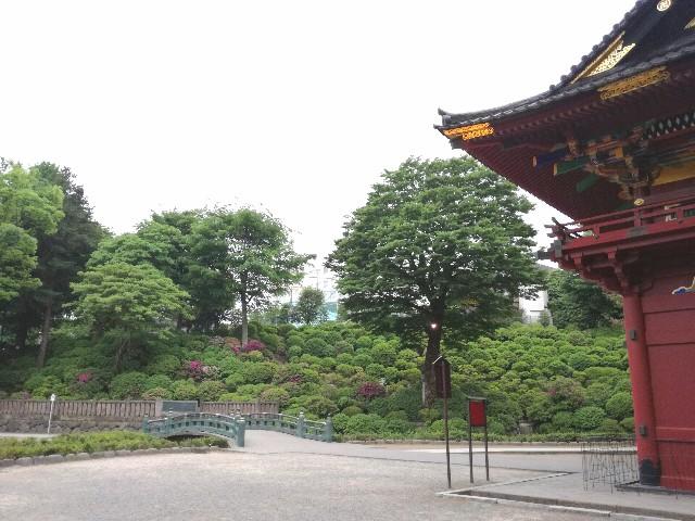 f:id:Shiro-yanaka:20170512211944j:image