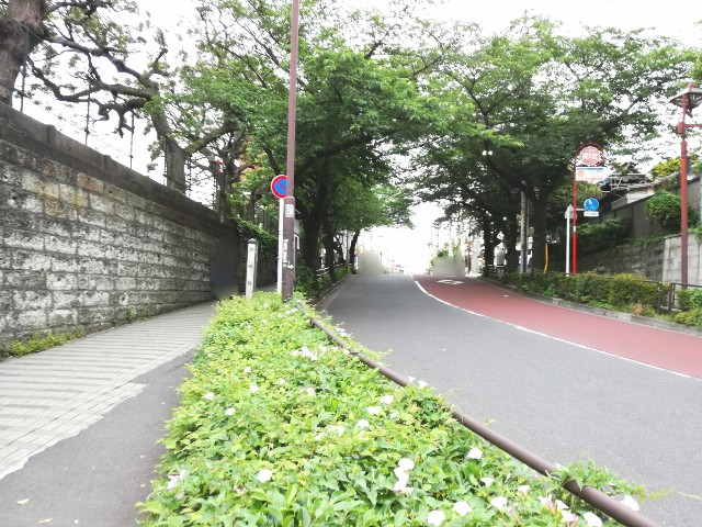 f:id:Shiro-yanaka:20170526222434j:image