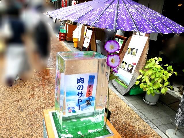 f:id:Shiro-yanaka:20170805215933j:image