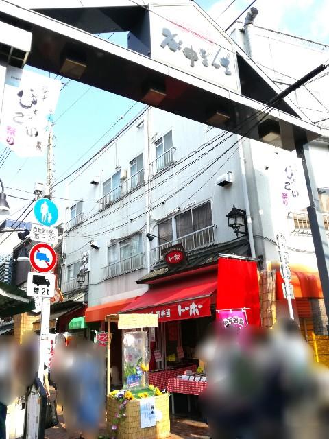 f:id:Shiro-yanaka:20170807001342j:image