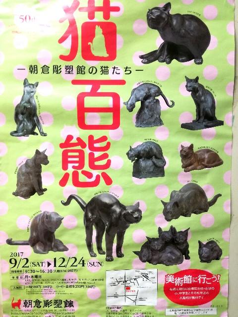 f:id:Shiro-yanaka:20171012175205j:image