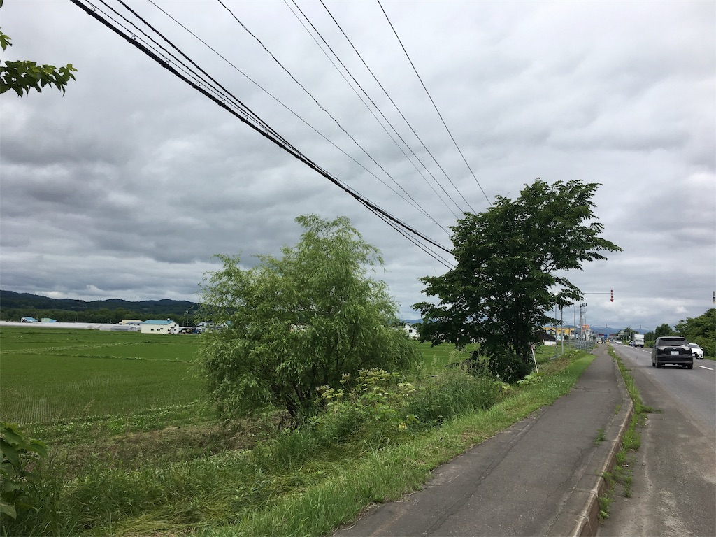 f:id:Shironori:20170628184710j:image