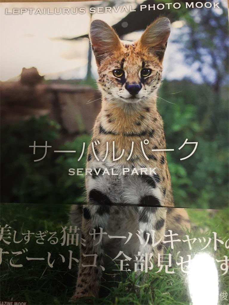 f:id:Shirosuke:20170405225224j:image