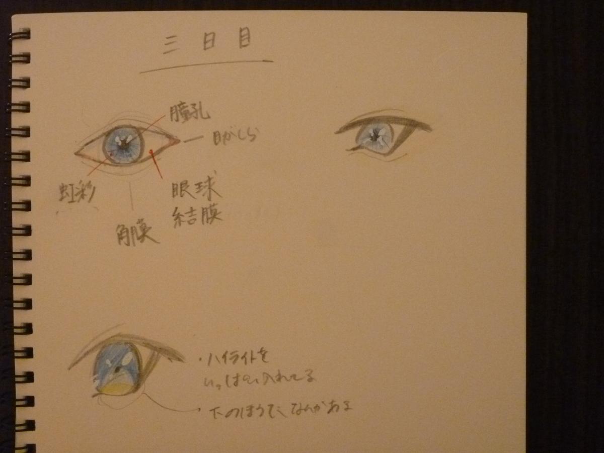 f:id:Shishiba_Ruki:20201128202251j:plain