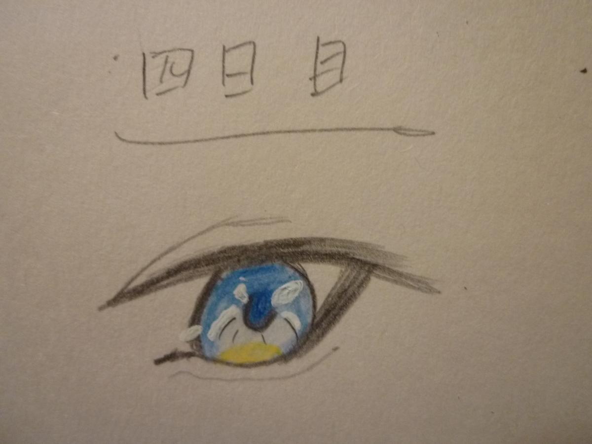 f:id:Shishiba_Ruki:20201128202319j:plain
