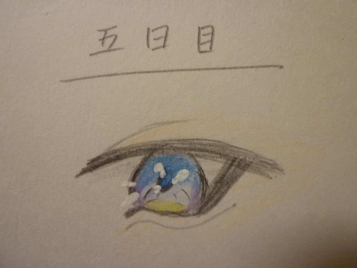 f:id:Shishiba_Ruki:20201128202345j:plain