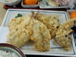 f:id:ShisyoTsukasa:20091122130719j:image