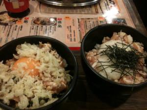 f:id:ShisyoTsukasa:20101114200238j:image