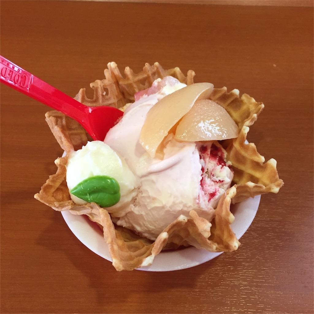 f:id:Shiyuki:20170604180456j:image