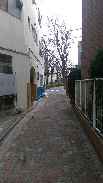 f:id:Sho-Gaku:20170317113851j:plain