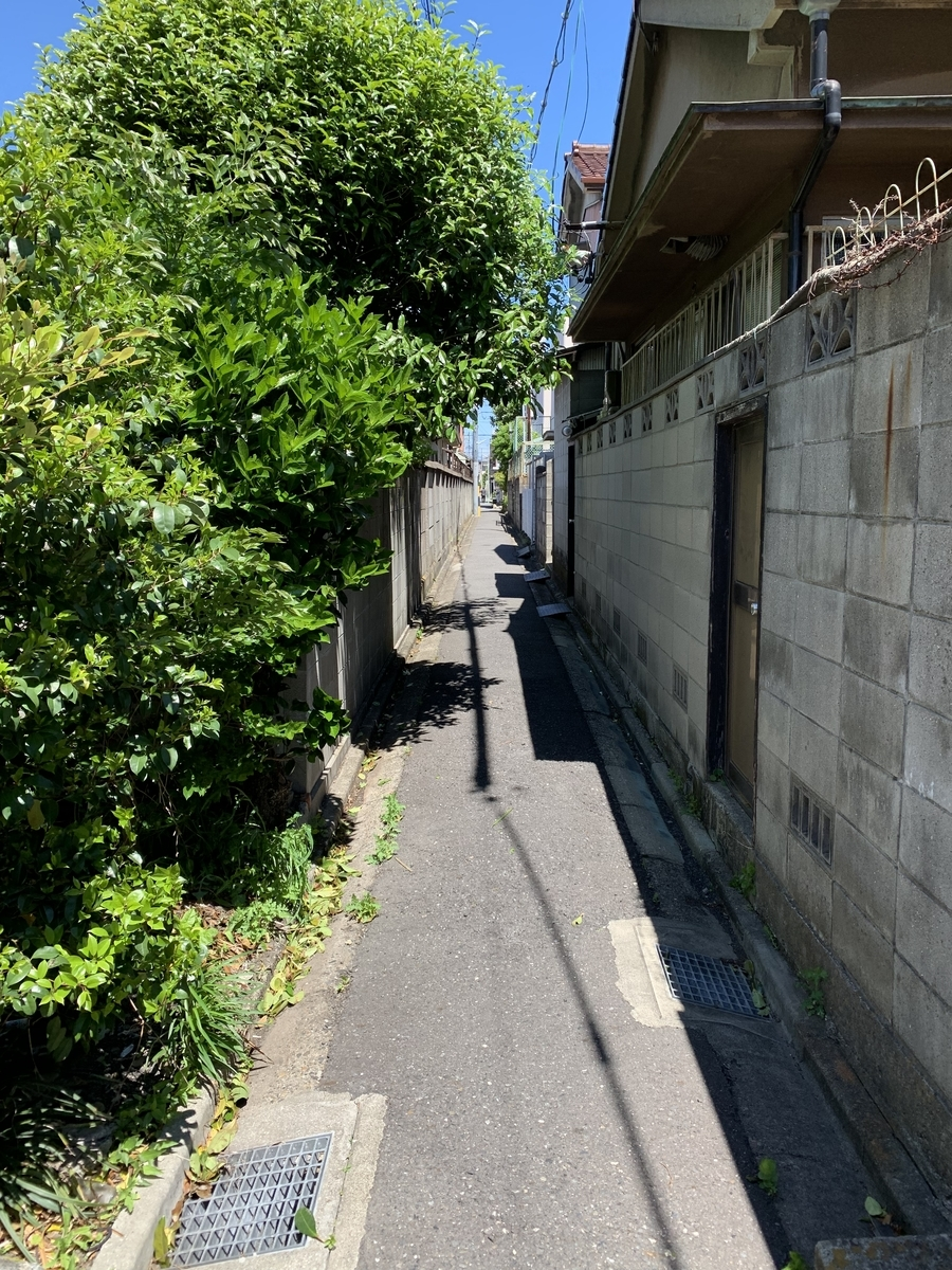 f:id:Sho-Gaku:20190510140501j:plain