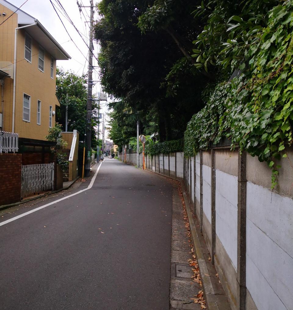f:id:Sho-Gaku:20200630095541p:plain