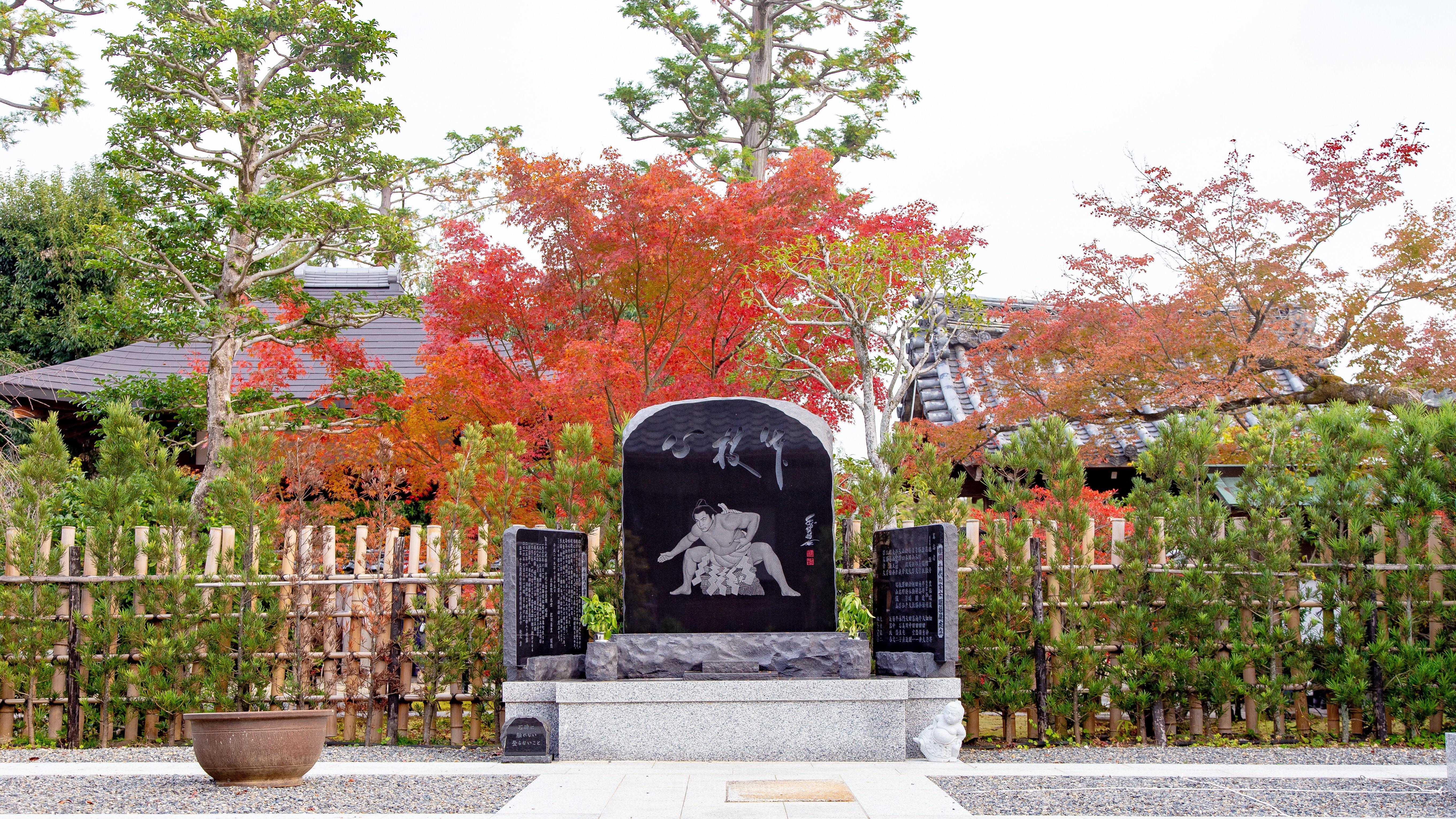f:id:Shotetsuan:20181126222652j:image