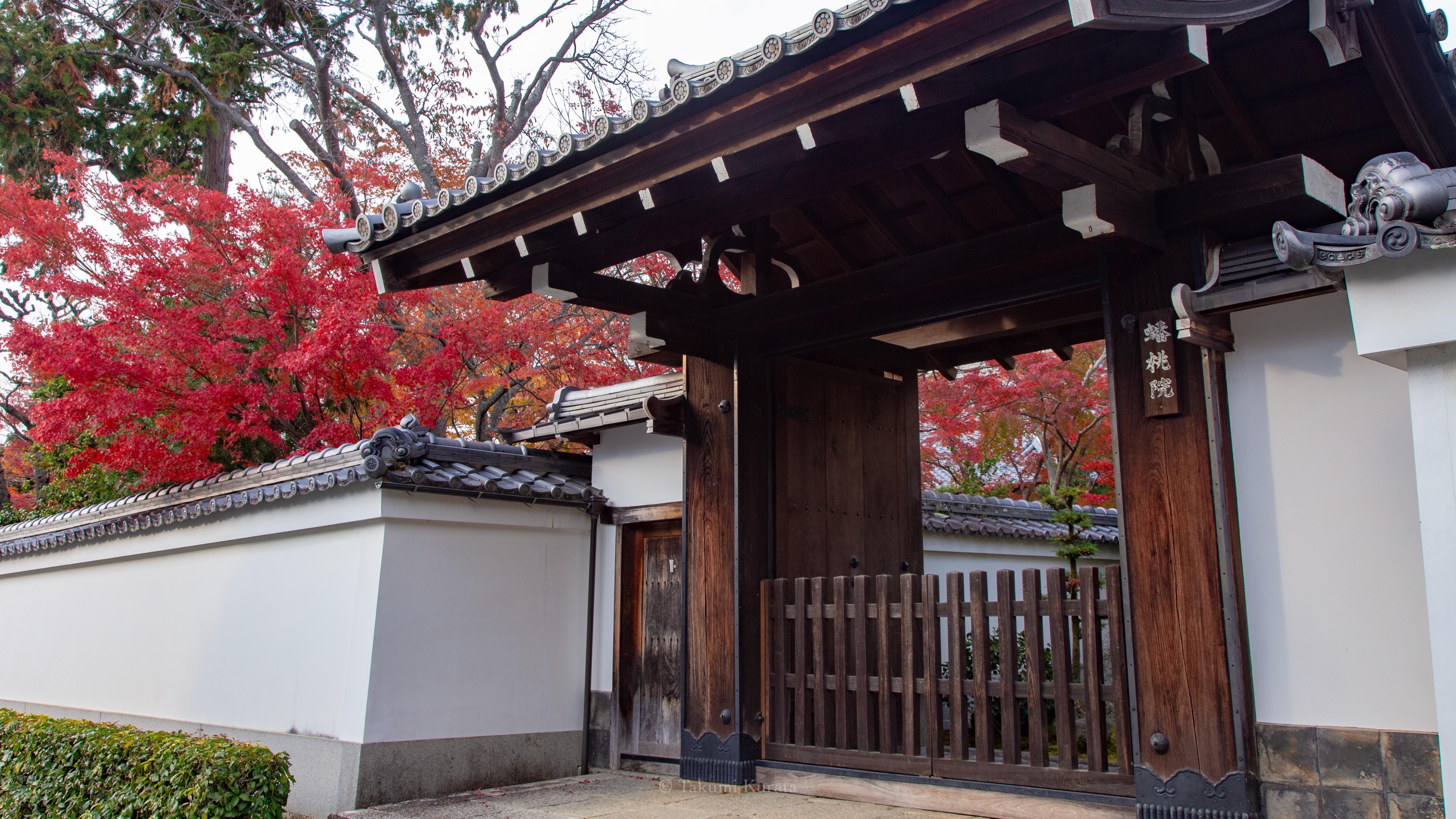 f:id:Shotetsuan:20181127002918j:image