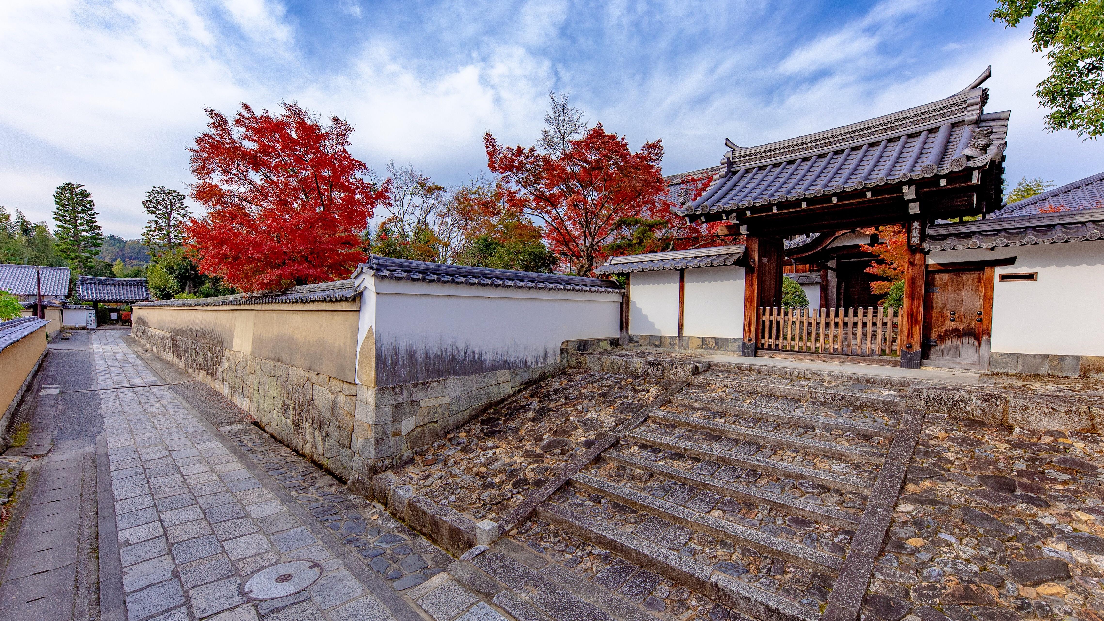 f:id:Shotetsuan:20181127002950j:image